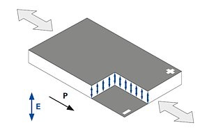 Shear displacement of the DuraAct Shear patch transducers, P: polarization direction, E: electric field