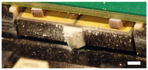 Figure 2 Motor of a PILine® M-663.5U linear stage after 19,000 hours of operation. Abraded particles accumulate on the coupling element and piezoelectric actuator due to electrostatic effects. Scale bar: 2 mm (Image: PI)
