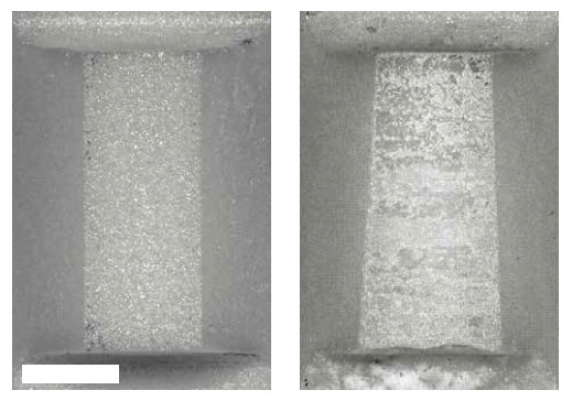 Figure 4 Top view of two coupling elements: As manufactured (left) and after 19,000 h of operation (right). The asymmetric wear (cf. width top to width bottom) results from slightly uneven alignment between the coupling element and the runner, caused by nonuniform preload and/or inhomogeneous load on the stage. On average, the height of the coupling element was reduced by approx. 60 μm during the test cycle, as determined by laser microscopy. Scale bar: 0.5 mm (Image: PI)