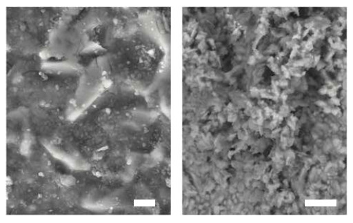 Figure 6 Scanning electron microscope (SEM) images of the runner surface. Scale bars: 2 μm (left), and 10 μm (right). Individual abraded particles can be identified (the small bright particles < 1 μm). The vast majority of particles however, form tightly stacked clusters, as can be seen in the image on the right-hand side (Image: PI)
